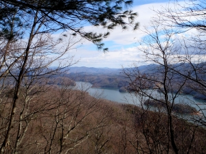 Big Laurel Branch Wilderness, view of the lake from the ridge.