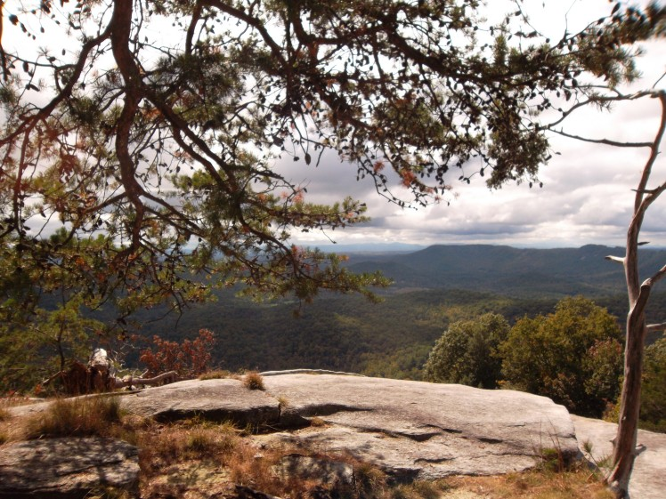 viewage Stone Mountain NC