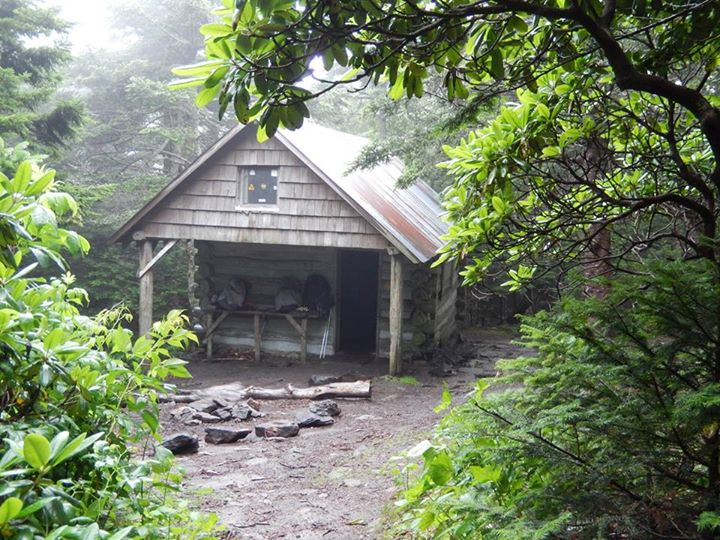 Roan Mountain High Knob Shelter