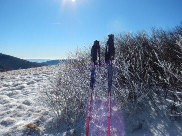 MSR Flight 3 Trekking Poles
